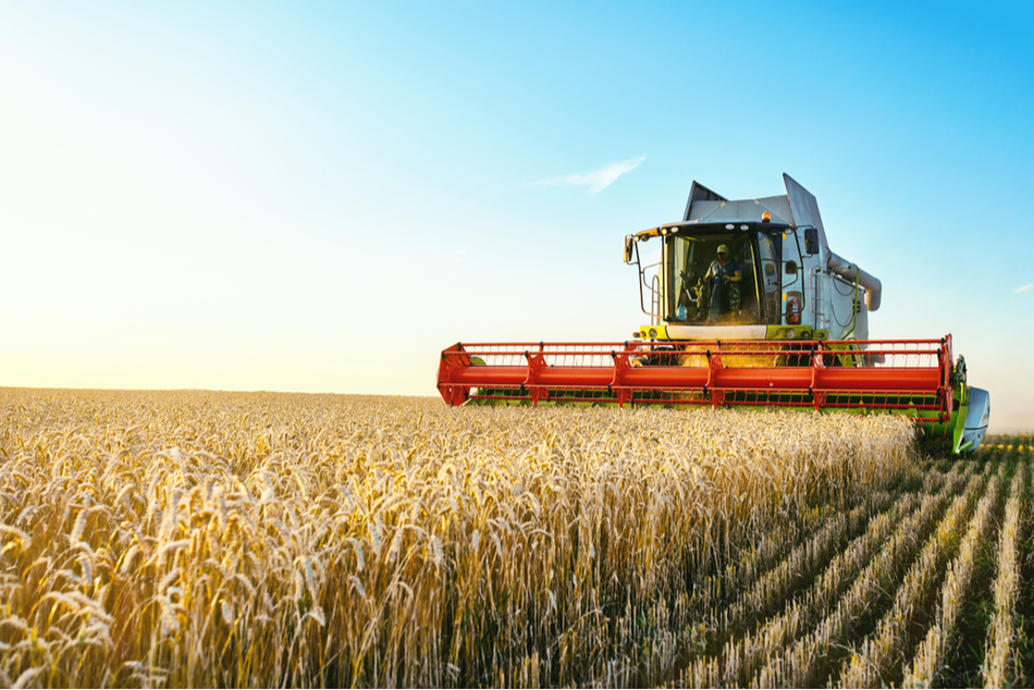 Agricultural Industry - a tractor mowing a field of wheat